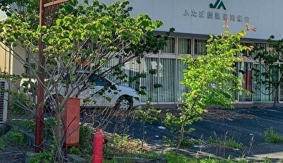 外国人が福島に立ち入り002.jpg
