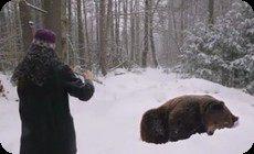 クマと接近遭遇する女性