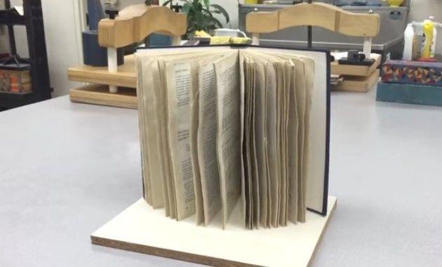 濡れた本を乾かす方法