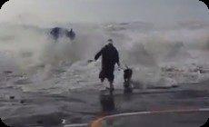 波にのまれる女性とワンコ