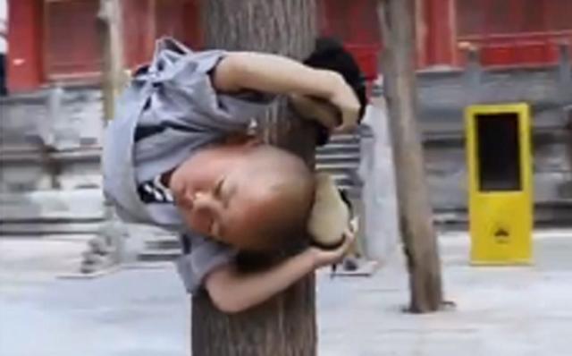 3歳のカンフーマスター.png