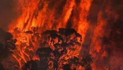 オーストラリアの山火事がヤバい.jpg