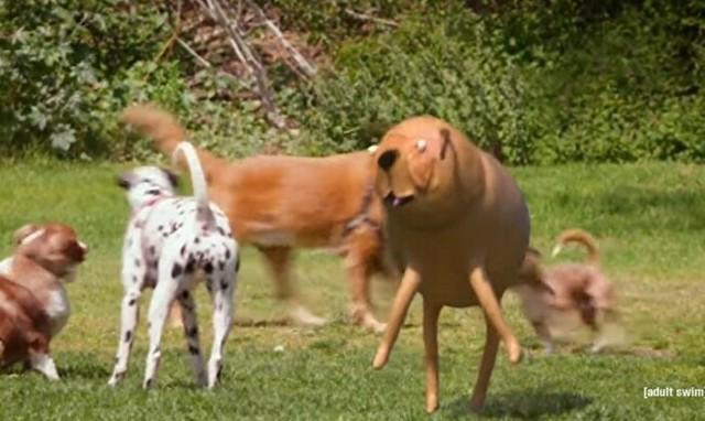 キモいペットの犬みたいな生き物.jpg