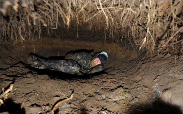 クマの冬眠用の巣穴 (3).jpg