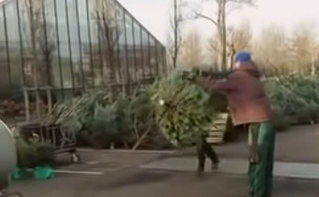 クリスマスツリーの梱包機に巻き込まれる人 (2).jpg