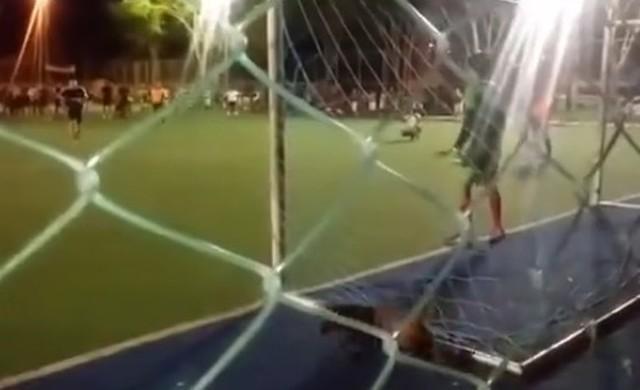 ゴールを阻止するイヌ.jpg