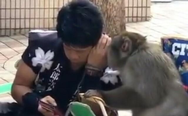 サルと会話出来る人.jpg