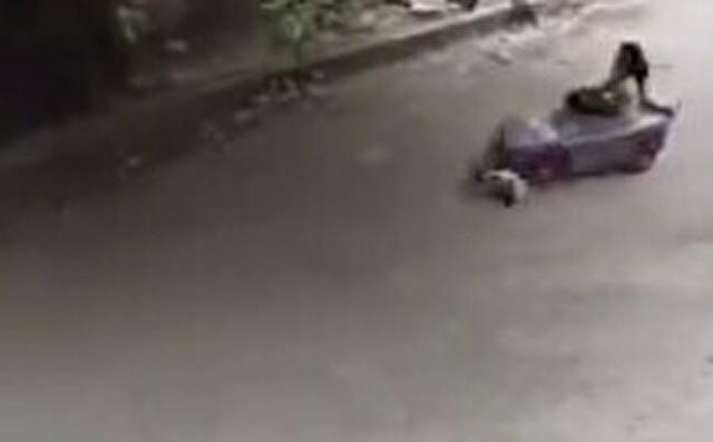 ネコがゴーカートに轢かれる.jpg