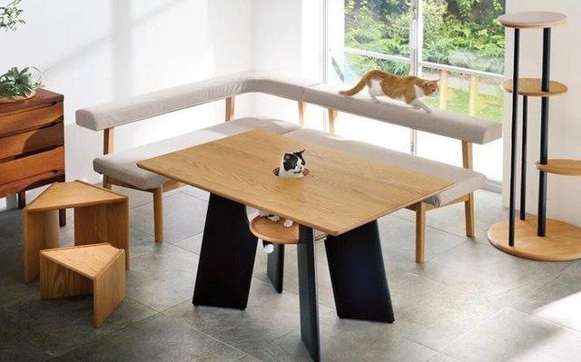 ネコが頭を出すテーブル (2).jpg