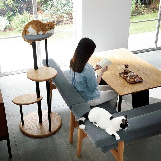 ネコが頭を出すテーブル (3).jpg