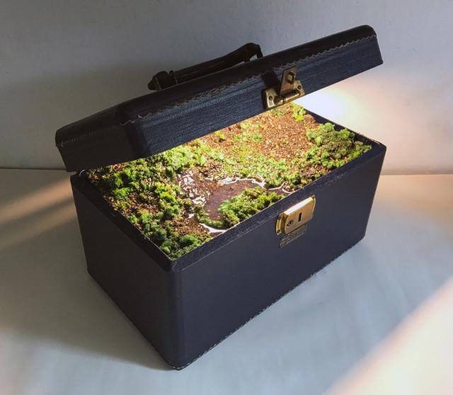 バッグの中に大自然 (1).jpg
