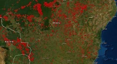 ブラジルのアマゾンのジャングルがヤバい.jpg