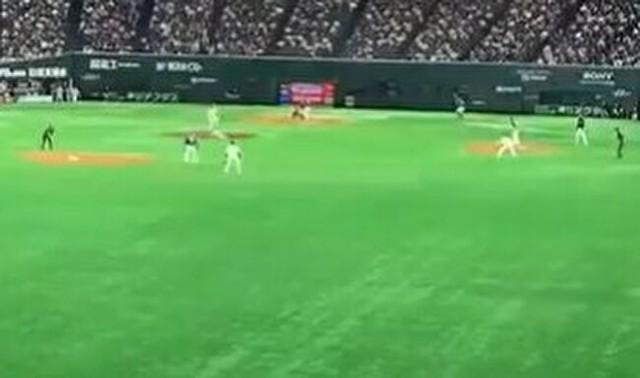 ホームランボールが飛んでくる映像.jpg