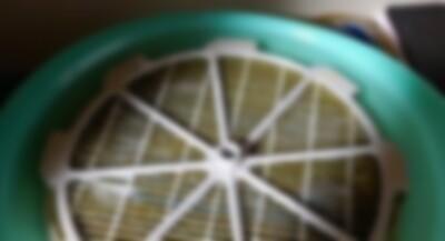 加湿器の汚れ.jpg