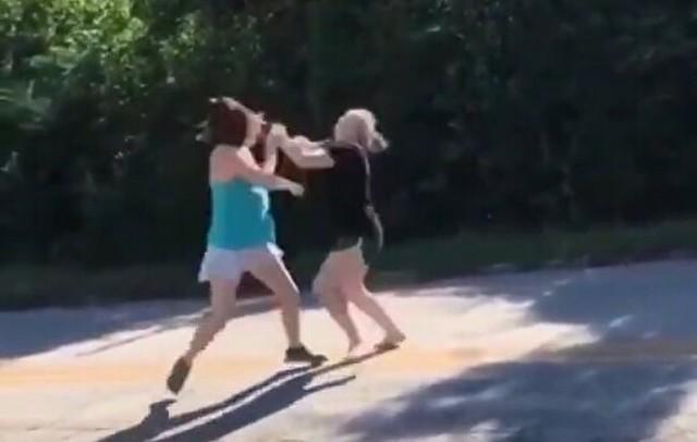 女の子同士のバチバチの殴り合い.jpg
