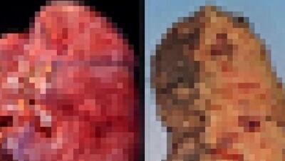 新型コロナで死んだ人の肺の画像.jpg
