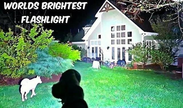 明るすぎるフラッシュライト.jpg