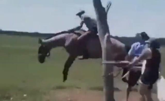 暴れ馬を乗りこなす凄いジョッキー.jpg