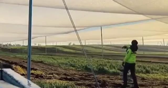 朝露で畑に水を与える方法.png
