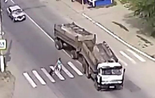 横断歩道で主人を救う犬の交通事故.jpg