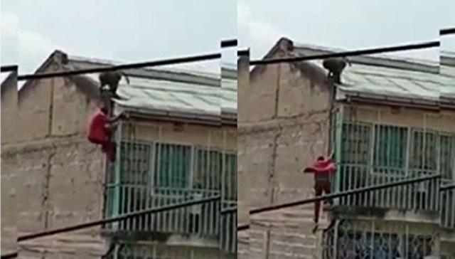 猿を追い払おうとした男が落下.jpg