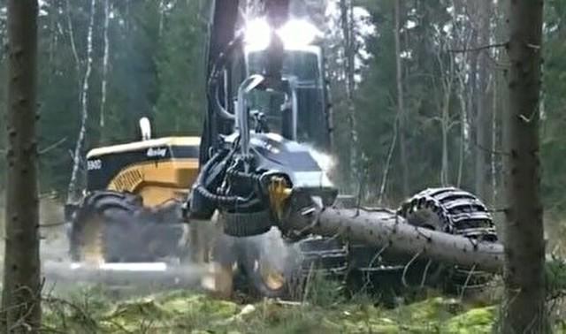 男はみんな好きな木材伐採機.jpg