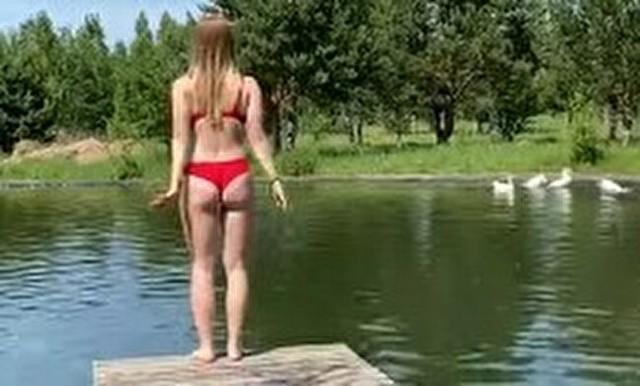 白鳥のテリトリーに入った女性.jpg