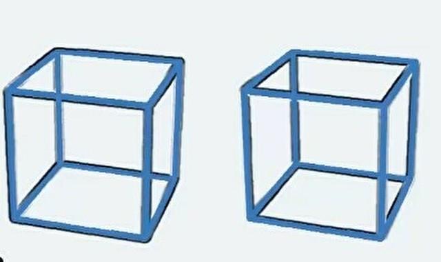 目の錯覚ボックス.jpg