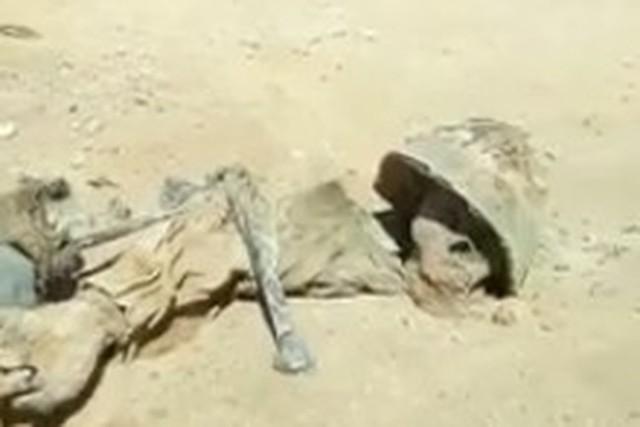 砂漠のミイラ.jpg