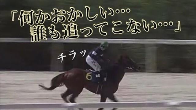 競馬で周回ミス.jpg