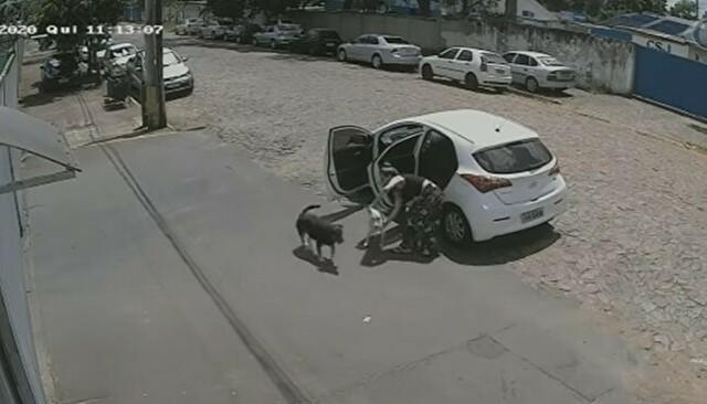 障碍のあるイヌを捨てる女.jpg
