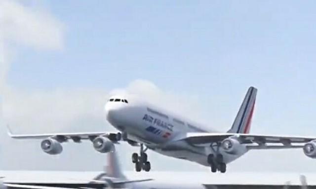 飛行機が鳥と出会ったら.jpg