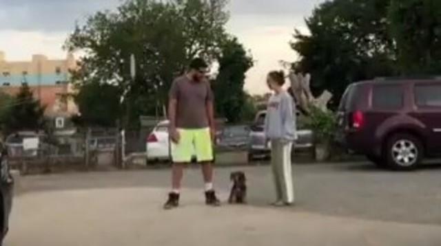 飼い主が左右に走ったら….jpg