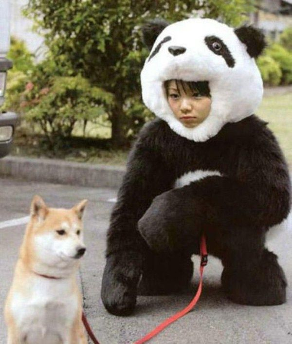 https://hiroburo001.up.seesaa.net/image/_hiroburo3-test001_imgs_1_f_1ff5ac2b.jpg