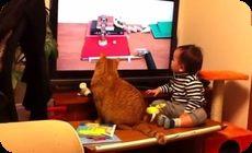 ピタゴラスイッチを見る猫と赤ちゃん