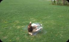エアバッグの衝撃実験