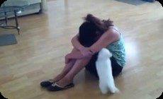 泣く子に構う犬