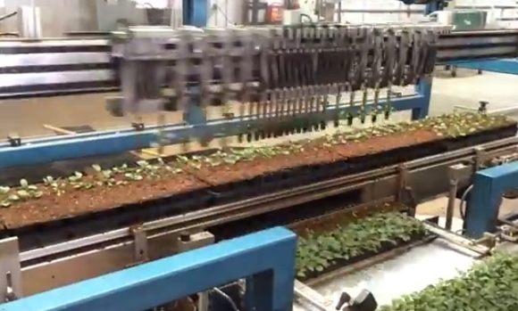 植物を作るロボット