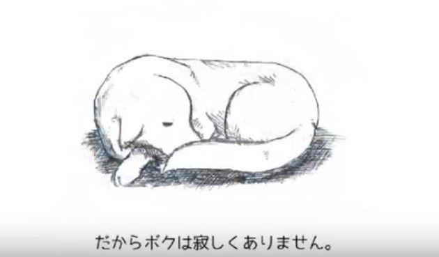 イヌのさっ処分の話