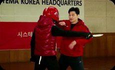 韓国人が教える護身術