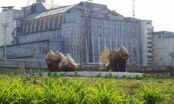 チェルノブイリは今野生動物の楽園