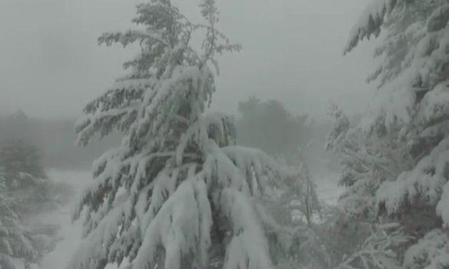 吹雪の日のドローン映像