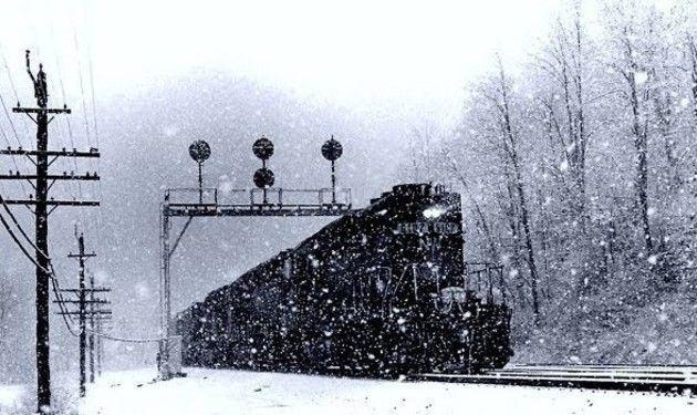 ノルウェーの電車ライブ