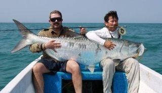 海や川の巨大魚