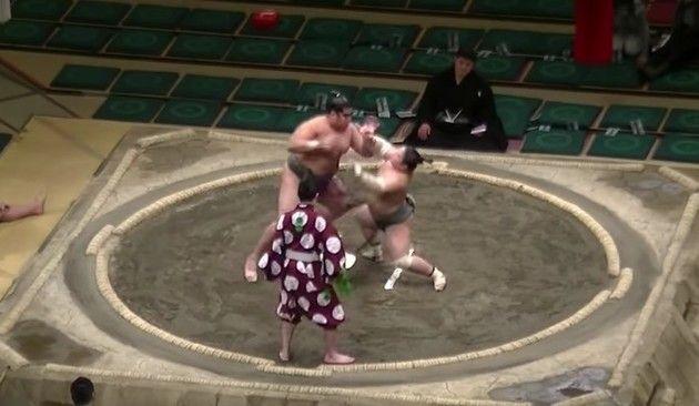 相撲のノックアウト