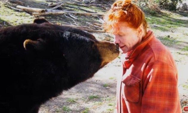 クマやオオカミによる獣害事件ドキュメンタリー